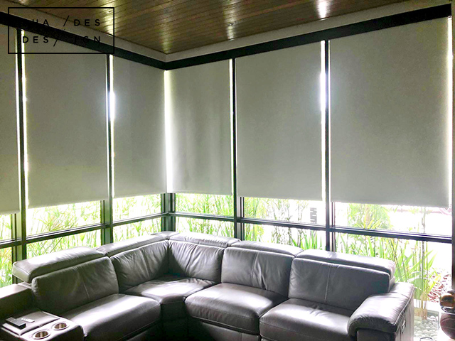 Entertainment room somfy shades