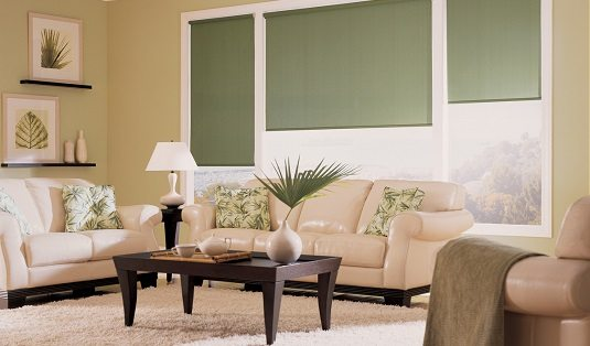 interior Blackout roller shades