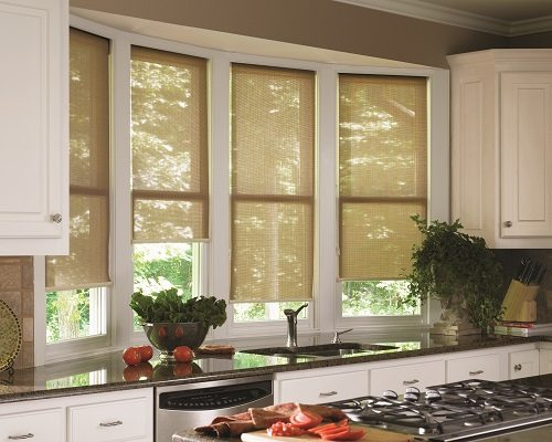 Screen Roller Shades Kitchen