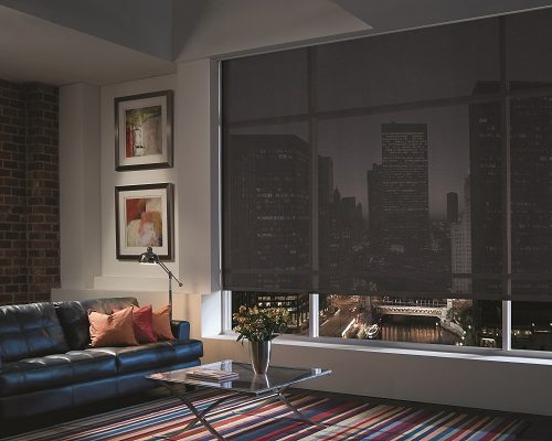 Screen roller shade Living room