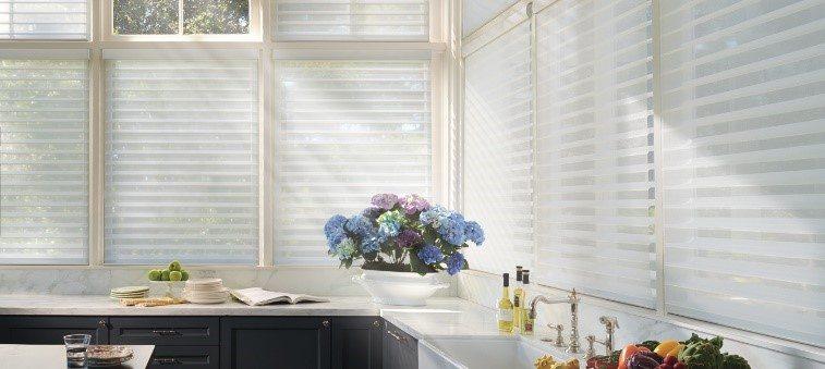 Alustra silhouette window treatments
