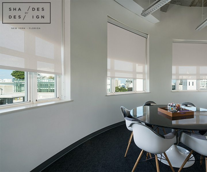 Dual Roller Shades for conference room